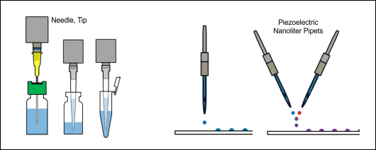 Liquid handling tools: From Picolitre (Right) to Microlitre (Left)