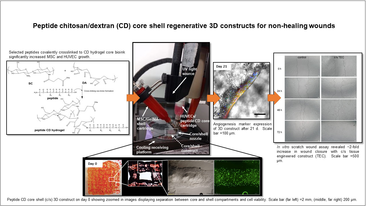 Peptide chitosan/dextran (CD) core/shell regenerative 3D constructs for non-healing wounds